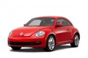 Beetle 2011-